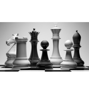 Chess 1/2 set
